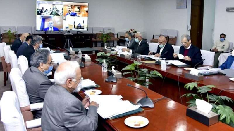 ECC forms committee to decide timeline for mango, kinnow export - Inside Financial Markets